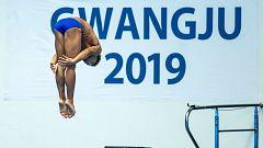 Mundial de Natación de Gwangju - Saltos: 3Mts. Preliminares masculino