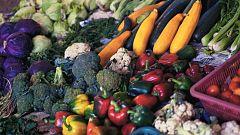 Aquí la tierra - Alimentos antiinflamatorios, diuréticos y depurativos