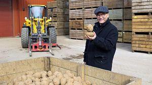 Cómo se hacen nuestros alimentos: patatas fritas
