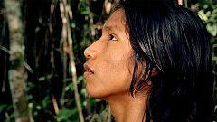 'El canto de la selva'