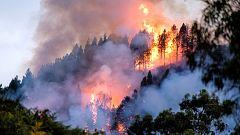 Se declara un nuevo incendio forestal en Gran Canaria