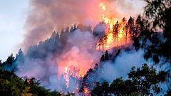 Canarias sufre más de 270 incendios forestales en 20 años