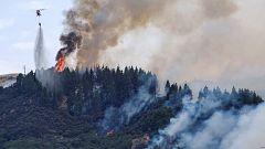 """El fuego de Gran Canaria causa una """"catástrofe ambiental"""" sin precedentes"""