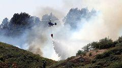 """El incendio """"incontrolable"""" en Gran Canaria, un desastre sin precedentes"""