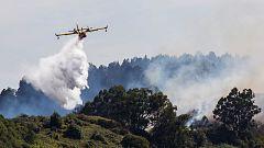 El incendio de Gran Canaria ha quemado ya 12.000 hectáreas