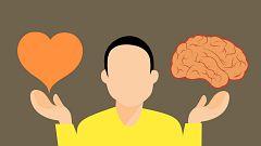 La mañana - ¿En qué parte del cerebro se toman decisiones morales?