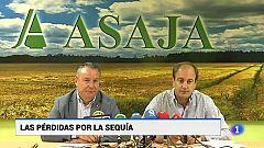 Castilla y León en 2' - 20/08/19