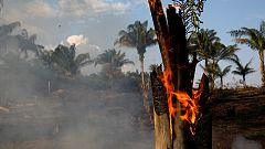 El récord de incendios amenaza la selva amazónica