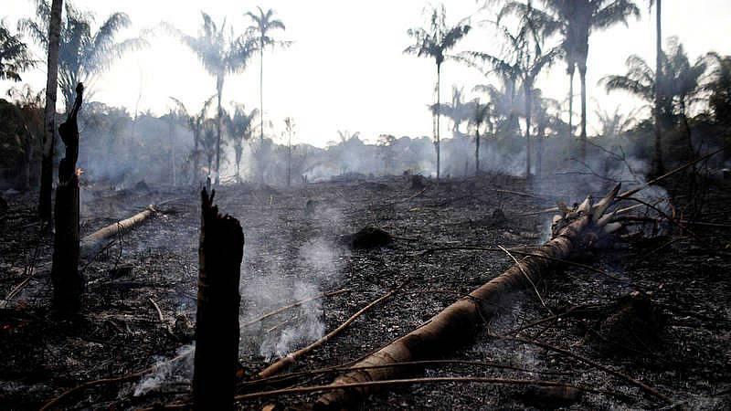 La Amazonia sufre los peores incendios forestales de los últimos años