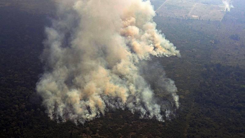 Los incendios en la Amazonia renuevan la alarma sobre el aumento de la deforestación