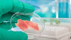 ¿Son comunes los brotes de listeriosis?