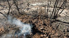 Los técnicos investigan las causas del incendio que asoló la cumbre de Canarias