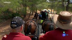 España Directo - Viaje al Delta del Ebro en carromato