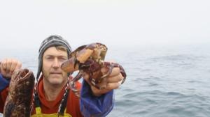 Nacido explorador: Chile, besado por el mar