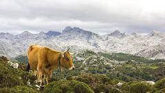 El litoral de Cataluña y en Baleares con lluvias y chubascos ocasionales