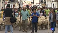 Noticias de Extremadura - Feria Torta del Casar - 14/10/19