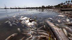 A partir de hoy - ¿Hay una crisis medioambiental en el Mar Menor?