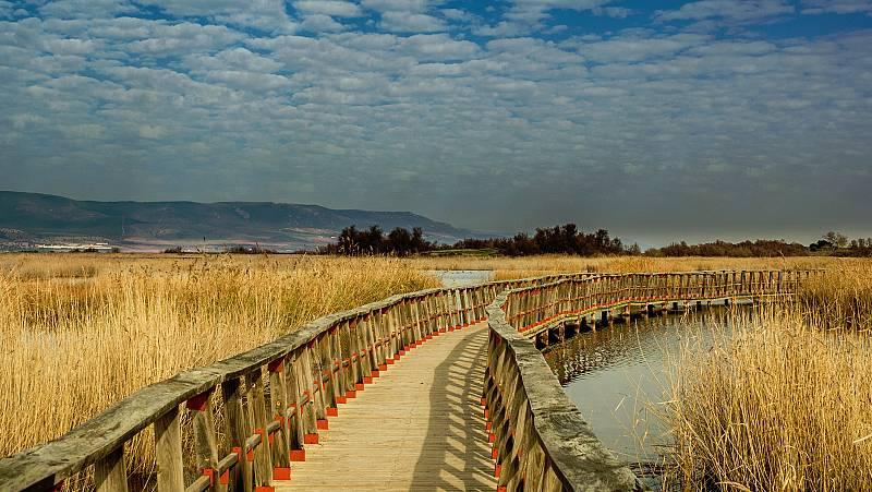 Mientras la zona del Mediterráneo está en alerta por lluvias, el Parque Nacional de las Tablas de Daimiel se encuentra en una situación crítica, con solo el 5%de su superficie encharcada. La sequía, la explotación agrícola y los pozos ilegales han p
