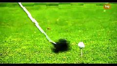 Golf - Circuito Santander Golf Tour 2019. La Peñaza (Zaragoza)