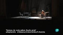 """Imprescindibles Miguel Delibes - """"Señora de rojo sobre fondo gris"""""""