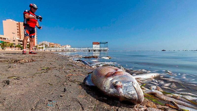 Mar Menor, en peligro por la contaminación procedente de la agricultura
