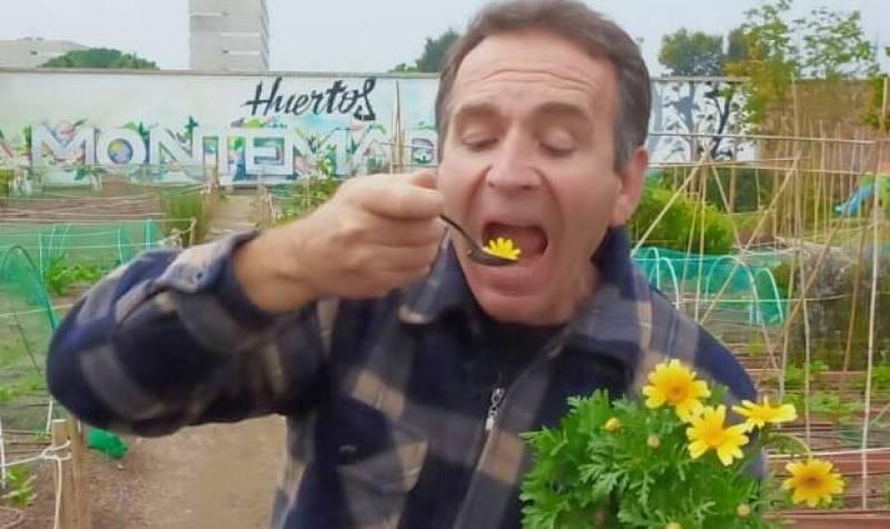 ¡Crisantemos comestibles!