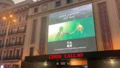 España Directo - Pablo Alborán presenta su último videoclip en primicia para sus fans