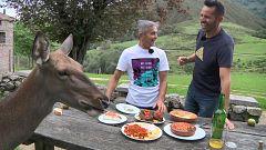 Aquí la tierra - El bambi asturiano