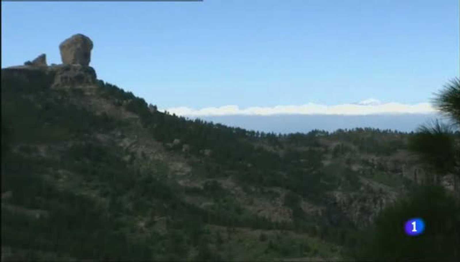 Aulaga - Encrucijada del Nublo - Gran Canaria