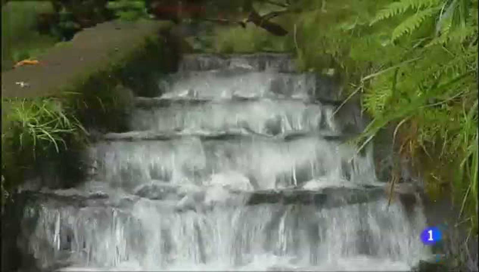 Aulaga - Levada das 25 Fontes - Madeira