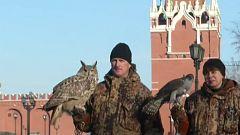 Los vigilantes alados del Kremlin