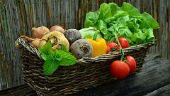 La Mañana - El Parlamento Europeo fomenta el consumo de productos ecológicos