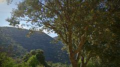 La Paisana - La Paisana visita Zahara de la Sierra
