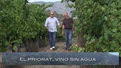 El escarabajo verde - Priorato, vino sin agua