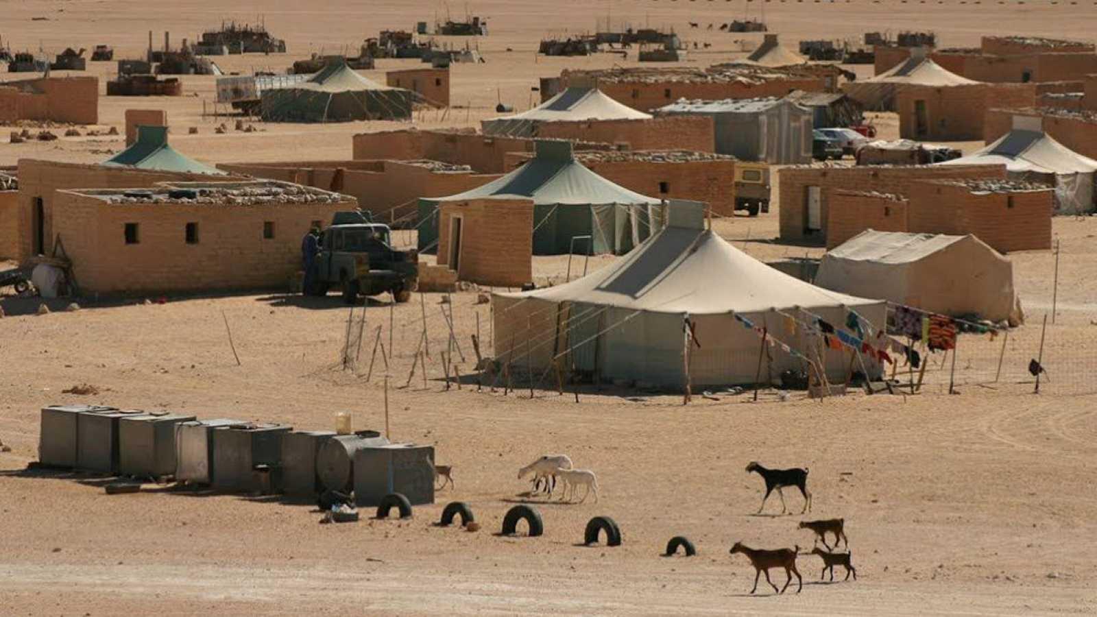 Defensa Desaconseja Viajar A Los Campamentos Del Sáhara Rtve