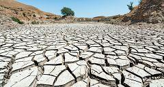 La mañana - Investigación: las consecuencias del cambio climático
