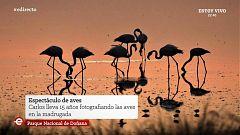España Directo - 05/12/19
