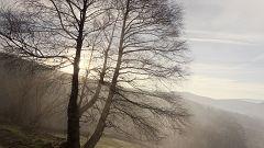 Cielo despejado en la mayor parte del país, con niebla densa en el interior