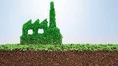 ¿Son todas las iniciativas ecológicas realmente 'verdes'?