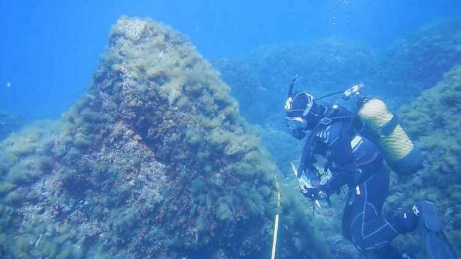 Lab24 - Copiando la naturaleza y Oceanografía de proximidad - ver ahora