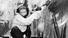Se subastan las pinturas del famoso chimpancé Congo