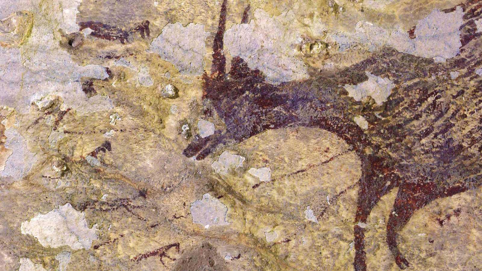 Un grupo de arqueólogos ha descubierto en Indonesia las pinturas rupestres más antiguas del mundo