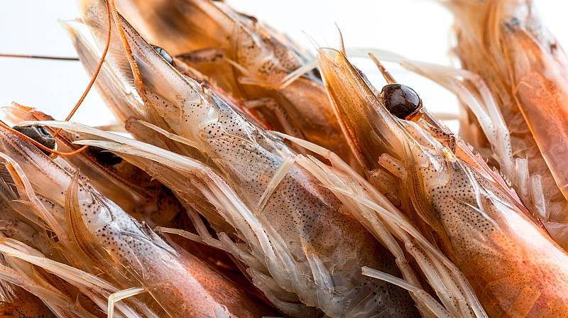 Ojo con las cabezas de algunos mariscos: contienen cadmio