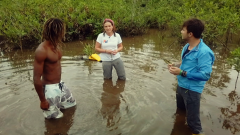 Titanes sin fronteras - Ecuador