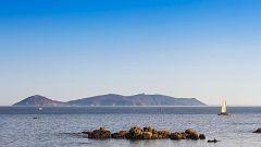 80 cm - Isla de Ons