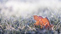 Fuertes heladas de madrugada en el interior peninsular