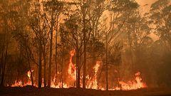 A partir de hoy - Conocemos la última hora de los incendios australianos con Jacob Petrus