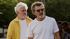 'Dolor y Gloria' y Antonio Banderas, nominados a los Oscar