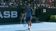 Tenis - ATP 250 Torneo Auckland: F. Fognini - F. López