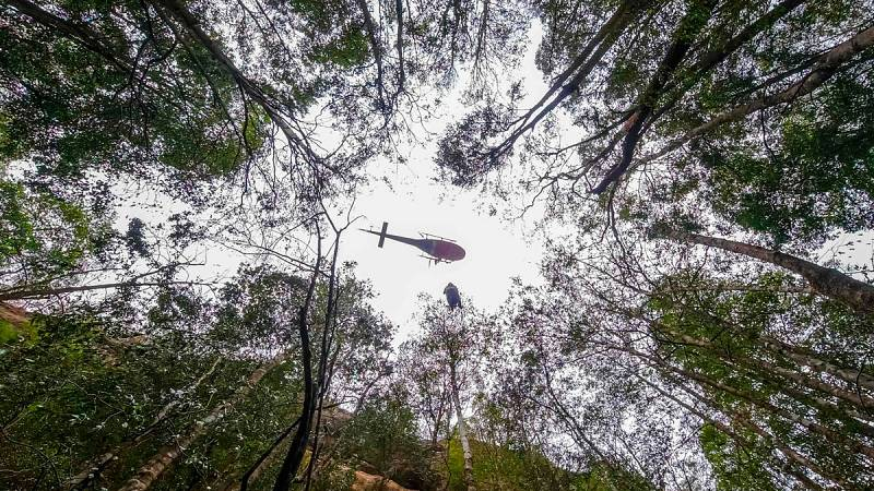 Australia eleva a 29 los fallecidos en los incendios que asolan al país